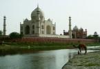 india-810x540