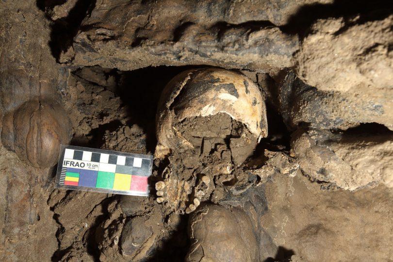 Particolare cranio di 5300 anni prima del recupero nella grotta Marcel Loubens