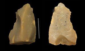 A tavola con Homo erectus